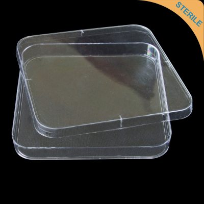 120mm square petri dish triple vent with lid polystyrene (PS) sterile